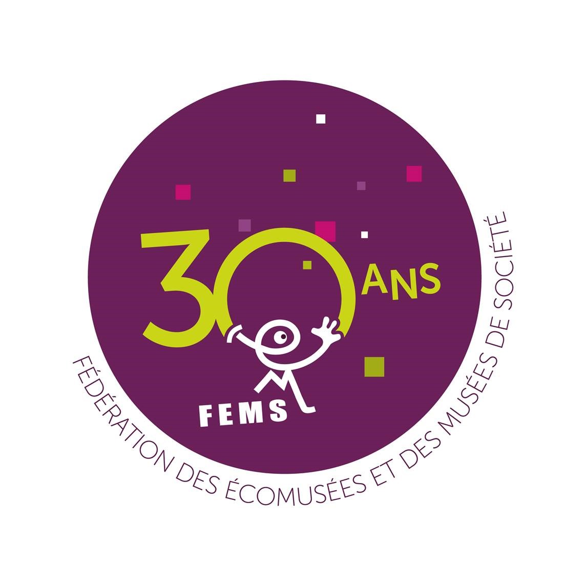 Macaron FEMS 30 ans